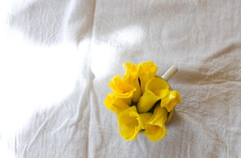 Kate Eschbach Photography - Yellow Buttercups-7