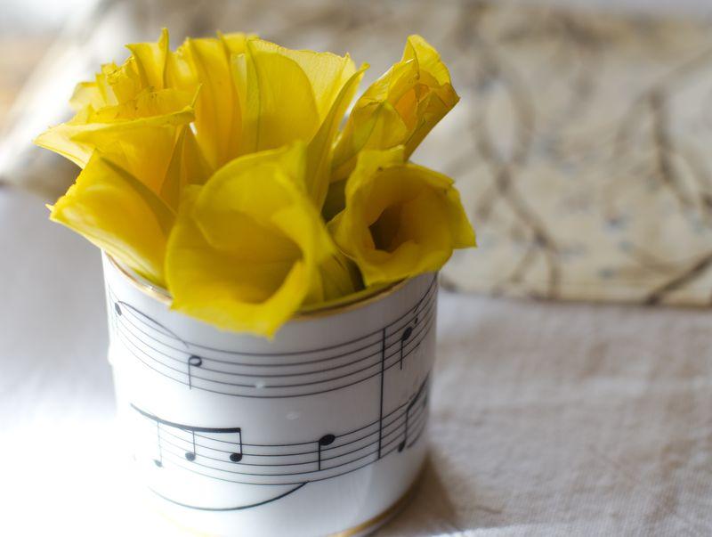 Kate Eschbach Photography - Yellow Buttercups-3
